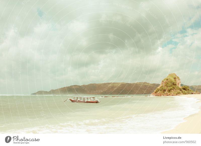 überfüllt... Himmel Natur Ferien & Urlaub & Reisen Wasser Pflanze Sommer Sonne Baum Meer Landschaft ruhig Wolken Strand Ferne Umwelt Küste