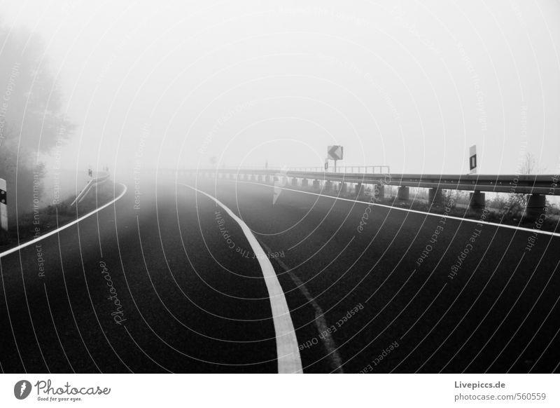 zur Jollybrücke Umwelt Natur Landschaft Himmel Wolken Herbst Nebel Pflanze Baum Verkehr Verkehrswege Straße Wege & Pfade Stein schwarz weiß Farbfoto