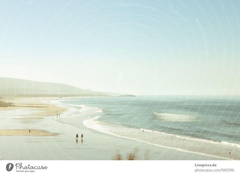 überfüllt... Himmel Natur Ferien & Urlaub & Reisen Wasser Pflanze Sommer Sonne Meer Landschaft ruhig Strand Ferne Umwelt Küste Freiheit Wellen