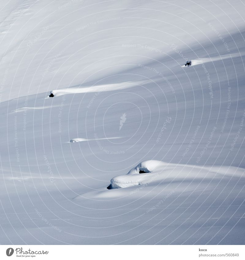 im schnee. Umwelt Natur Landschaft Erde Schnee Berge u. Gebirge Linie Streifen kalt blau schwarz weiß Einsamkeit rein Schneebedeckte Gipfel Farbfoto