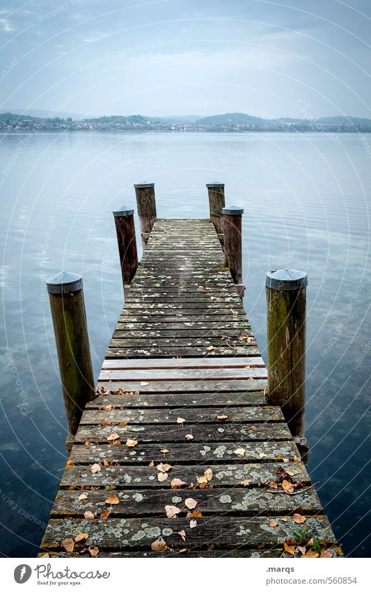 Steg Ferien & Urlaub & Reisen Ausflug Abenteuer Natur Landschaft Urelemente Wasser Himmel Horizont Schönes Wetter See Bodensee Holz Erholung kalt schön blau