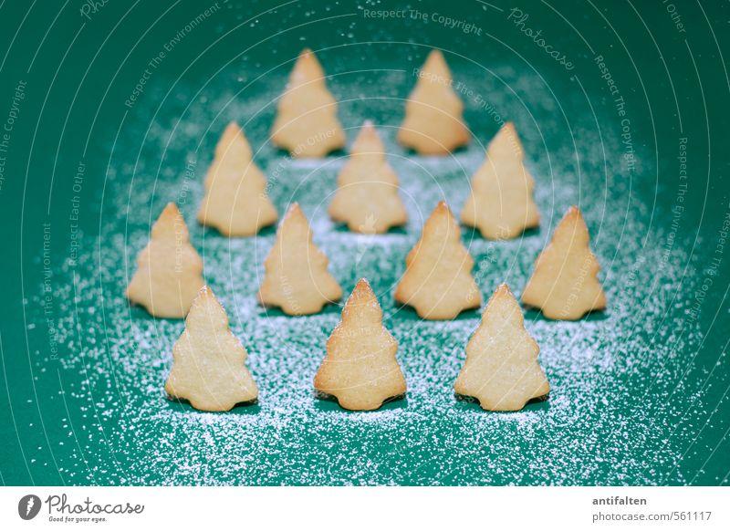 Schönes Plätzchen II Lebensmittel Teigwaren Backwaren Ernährung Essen Feste & Feiern Winter Schnee Schneefall Baum Tanne Wald Zeichen Weihnachtsbaum