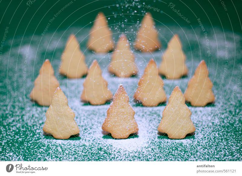 Schönes Plätzchen III Weihnachten & Advent grün Baum Freude Winter Wald gelb Essen natürlich Schnee Lebensmittel Schneefall stehen Fröhlichkeit Ernährung Kochen & Garen & Backen