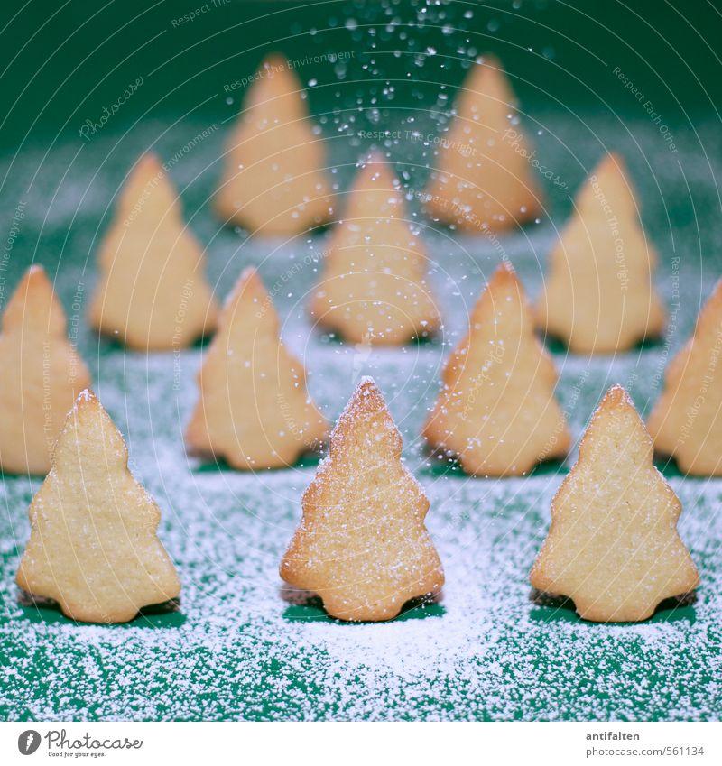 Schönes Plätzchen IV Lebensmittel Teigwaren Backwaren Ernährung Essen Winter Schnee Natur Schneefall Baum Tanne Wald Zeichen Weihnachtsbaum stehen Fröhlichkeit