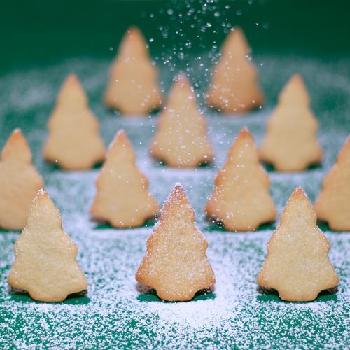 Schönes Plätzchen IV Natur Weihnachten & Advent grün Baum Freude Winter Wald gelb Essen natürlich Schnee Lebensmittel Schneefall stehen Fröhlichkeit Ernährung