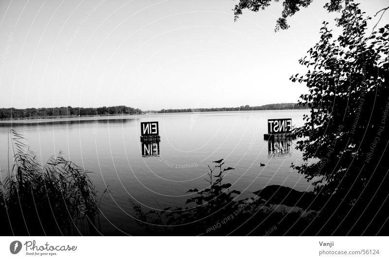 Einstein Natur Wasser ruhig See Küste Schilder & Markierungen Klarheit Text Gewässer Boje Caputh Gemeinde Schwielowsee