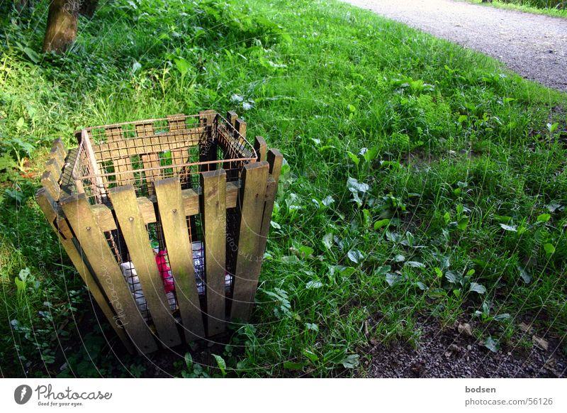 Müll-Idyll Farbfoto Außenaufnahme Menschenleer Textfreiraum rechts Tag Dämmerung Sonnenstrahlen Zentralperspektive Ausflug Sommer wandern Natur Sonnenlicht
