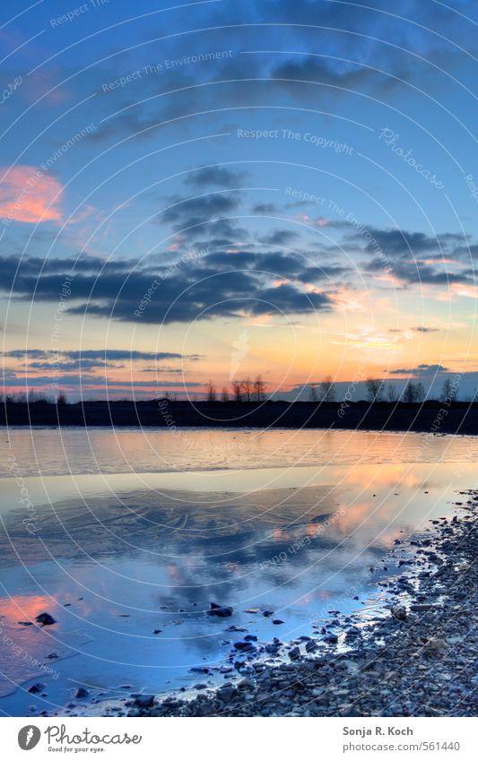 Winterlandschaft Natur Landschaft Wasser Himmel Sonnenaufgang Sonnenuntergang Schönes Wetter Eis Frost Küste Seeufer frei frisch kalt natürlich blau grau