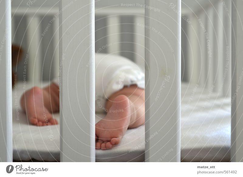 Baby hinter Gittern Kinderzimmer Mensch Kleinkind Familie & Verwandtschaft Kindheit Leben Fuß 1 0-12 Monate Linie schlafen klein niedlich weiß Glück Liebe