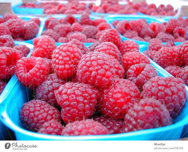 Himbeeren lecker süß frisch rosa rot Ernährung Dessert himbeer Beeren Frucht Lebensmittel Natur Makroaufnahme