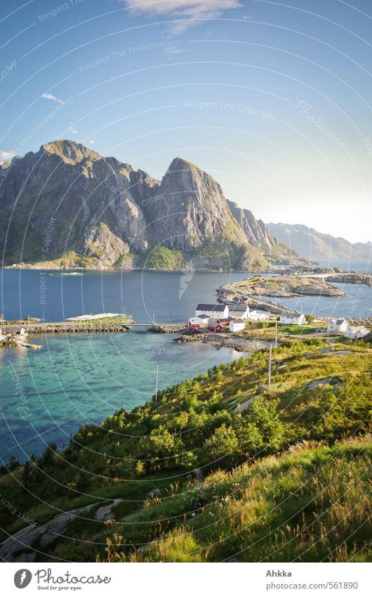 Fjord, Lofoten II Natur Ferien & Urlaub & Reisen blau Farbe Meer Erholung Landschaft ruhig Ferne Berge u. Gebirge Wege & Pfade Freiheit Stimmung Idylle