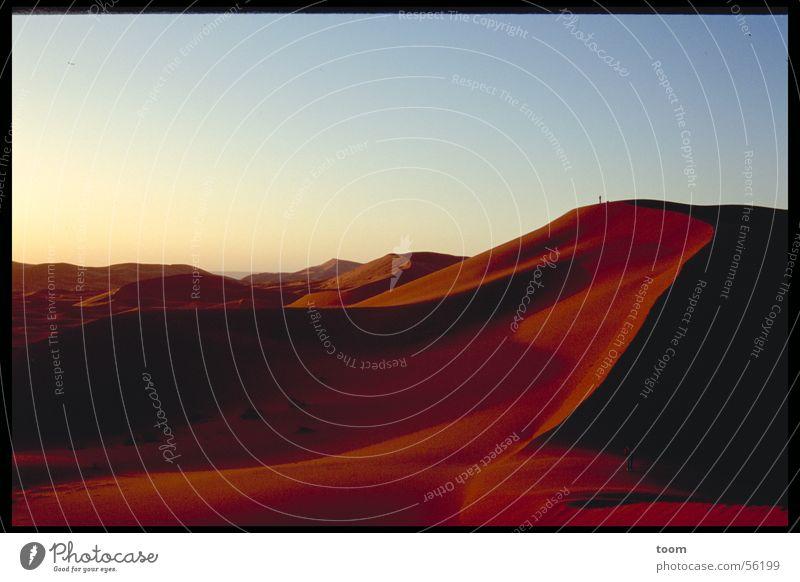 Sahara Sonnenaufgang Wüste Stranddüne Sand