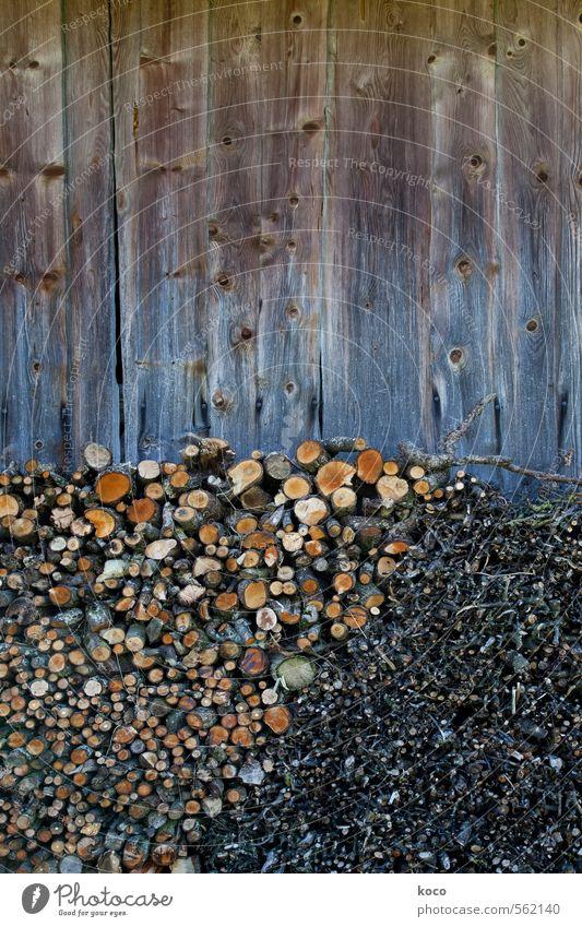 Vorratshaltung. Pflanze Baum schwarz gelb Wand Mauer Holz Linie braun orange Fassade rund Ast trocken nachhaltig sparsam