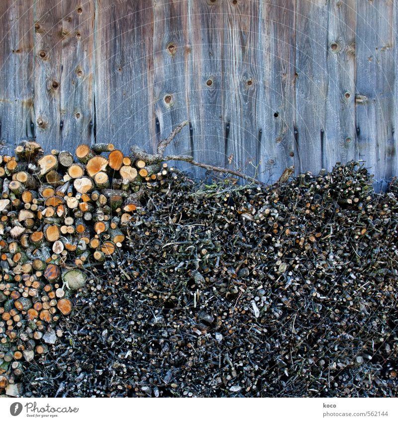 Brennholz Heizperiode heizen Umwelt Herbst Winter Dürre Baum Nutzpflanze Ast Zweig Zweige u. Äste Hütte Mauer Wand Fassade Holz alt authentisch einfach fest