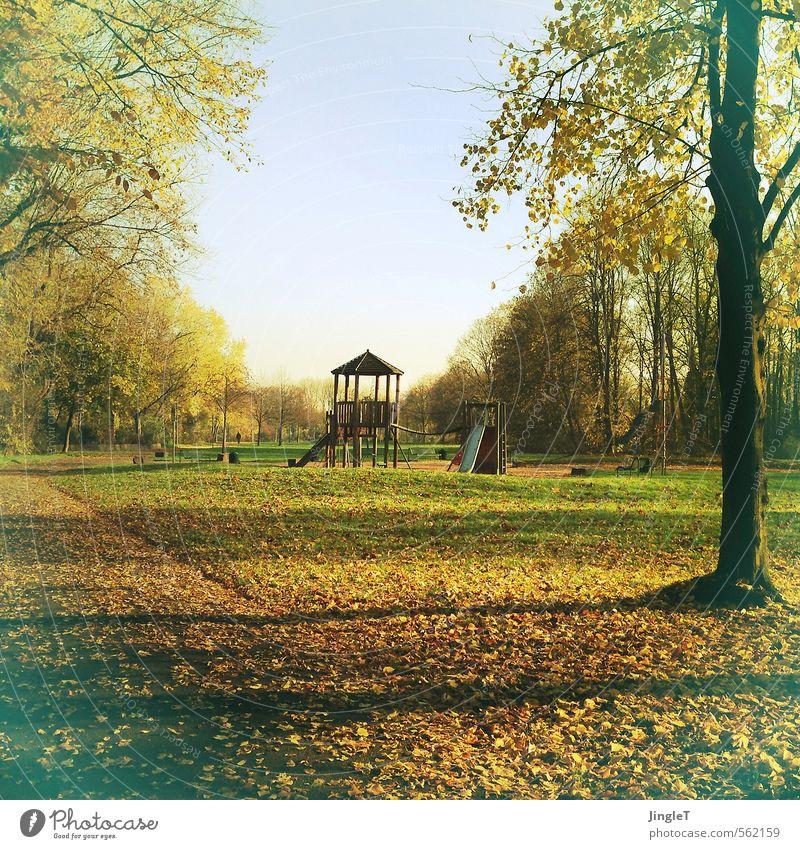 blätterspielplatz Umwelt Natur Landschaft Himmel Herbst Baum Gras Blatt Park Spielplatz Spielen authentisch einfach blau braun gelb gold grün Ordnungsliebe
