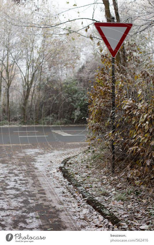 andere haben vorfahrt. Natur Stadt weiß Pflanze Baum rot Wolken Winter kalt Straße Herbst Wege & Pfade Gras Linie Metall braun