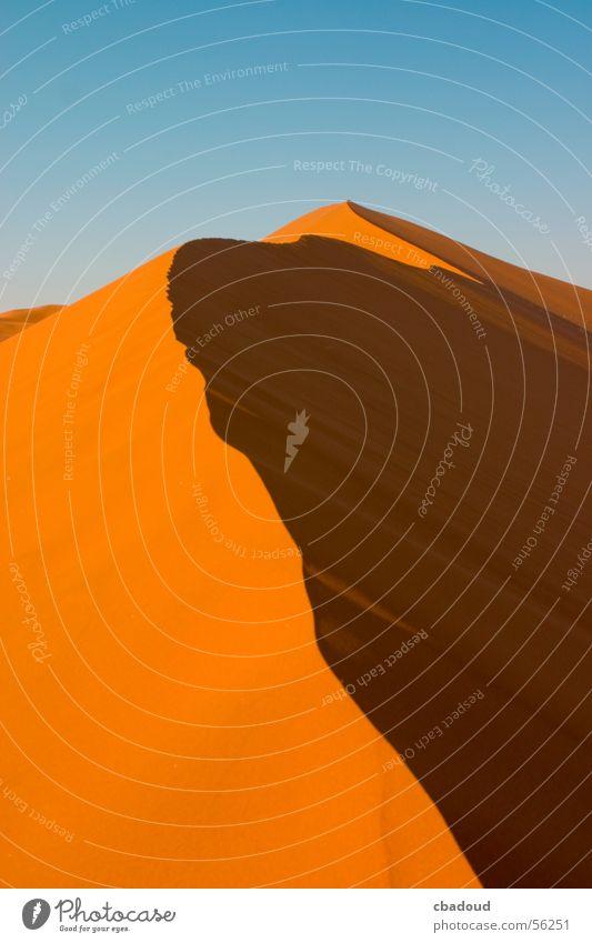 Sanddüne in Namibia Wüste Einsamkeit Abenteuer Zufriedenheit Ferne Stranddüne Außenaufnahme Strukturen & Formen Menschenleer Tag Zentralperspektive