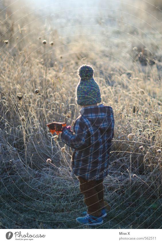 Weißes Feld Freizeit & Hobby Spielen Garten Kind Kleinkind Junge 1 Mensch 1-3 Jahre 3-8 Jahre Kindheit Natur Winter Wetter Nebel Eis Frost Schnee Blume Gras