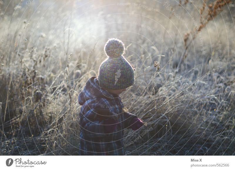 Eisig Mensch Kind Natur Blume Winter Wiese Schnee Gefühle feminin Gras Stimmung Wetter maskulin Kindheit Sträucher