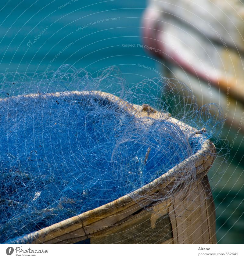 blues Fischer Fischereiwirtschaft Handwerk Schifffahrt Fischerboot Fischnetz Netz Fischernetz Fischereihafen Wasser leuchten blau türkis weiß fleißig