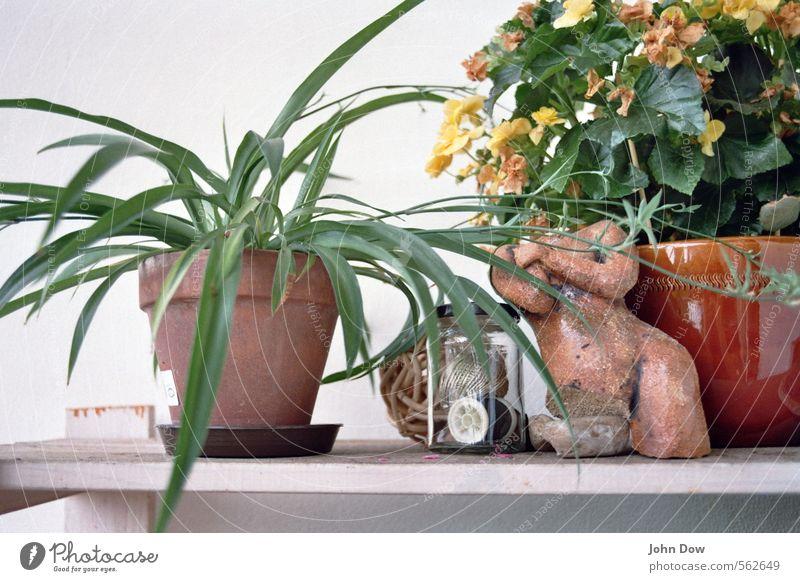 Stillleben mit Torso Häusliches Leben Garten Dekoration & Verzierung Skulptur Pflanze Grünpflanze Topfpflanze Vergänglichkeit Wachstum Wandel & Veränderung welk