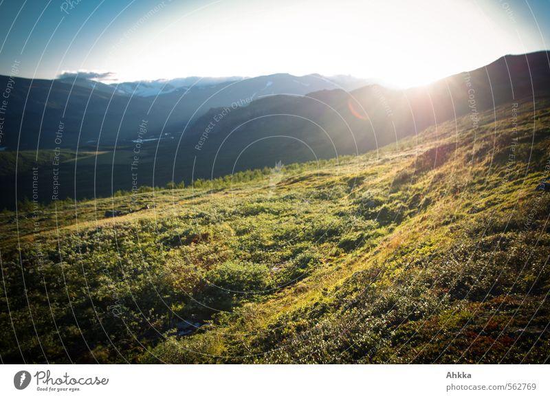 Ende in Sicht Natur Ferien & Urlaub & Reisen Pflanze Sonne Erholung Landschaft ruhig Ferne Berge u. Gebirge Leben Wiese Gras Freiheit Stimmung Zufriedenheit Sträucher