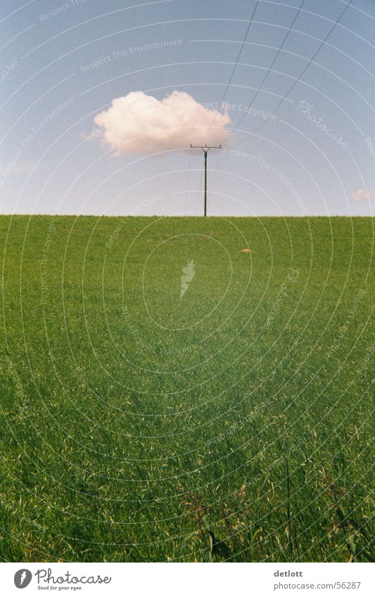 Wolkenkrücke Natur Himmel grün blau Sommer Ferien & Urlaub & Reisen ruhig Ferne Wiese Spielen Gras Landschaft wandern Horizont Perspektive