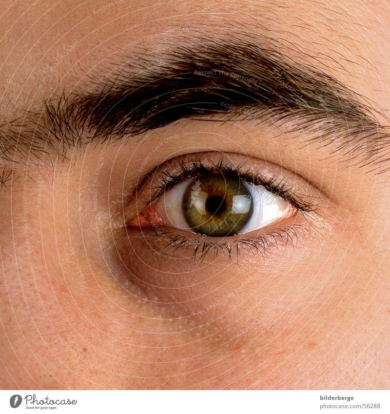 Auge-13 Wimpern Augenbraue Pupille Regenbogenhaut Kontaktlinse