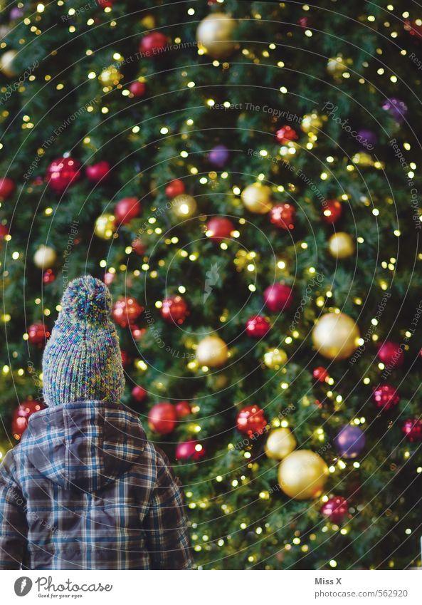 uih Weihnachten & Advent Mensch Kind Kleinkind Mädchen Junge Kindheit 1 1-3 Jahre 3-8 Jahre glänzend groß Gefühle Stimmung Überraschung Weihnachtsbaum