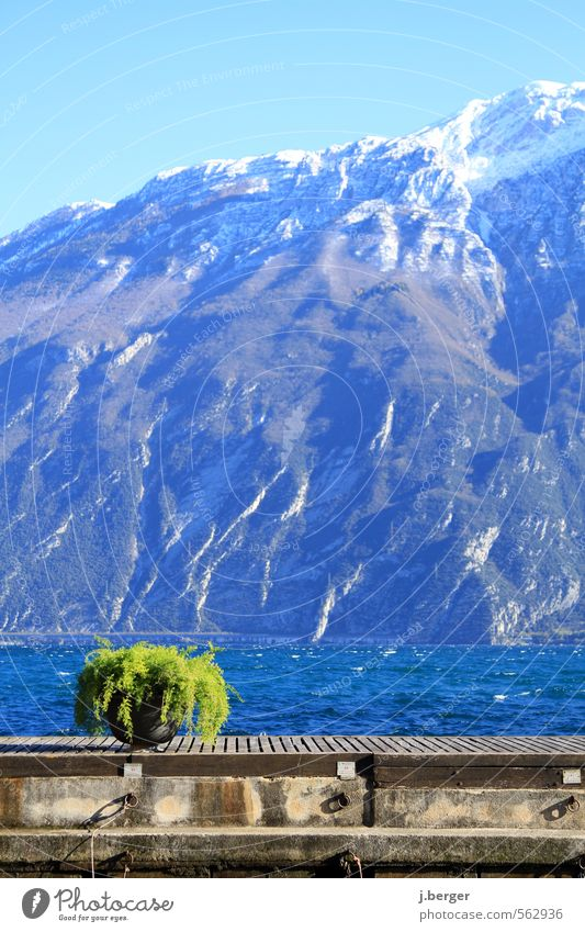grün vor blau Ferien & Urlaub & Reisen Winter Winterurlaub Berge u. Gebirge Umwelt Natur Landschaft Wasser Wolkenloser Himmel Schönes Wetter Wind Alpen Gipfel