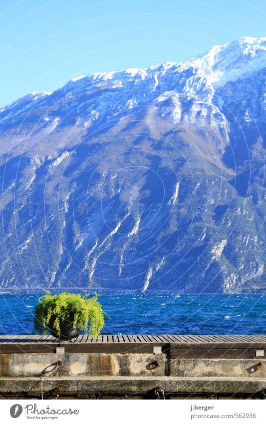 grün vor blau Natur Ferien & Urlaub & Reisen Wasser Landschaft Winter Umwelt Berge u. Gebirge braun Wind Schönes Wetter Gipfel Alpen Seeufer