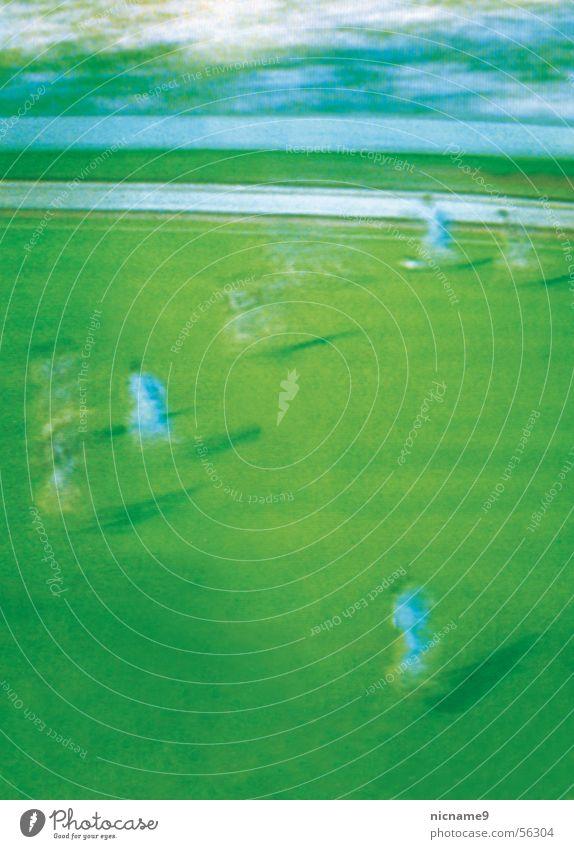 Spielfeld grün Sport Spielen Bewegung laufen Fußball Ball Fernsehen Tor Schuss Sportmannschaft Symbole & Metaphern Defensive Weltmeisterschaft 11 Medien