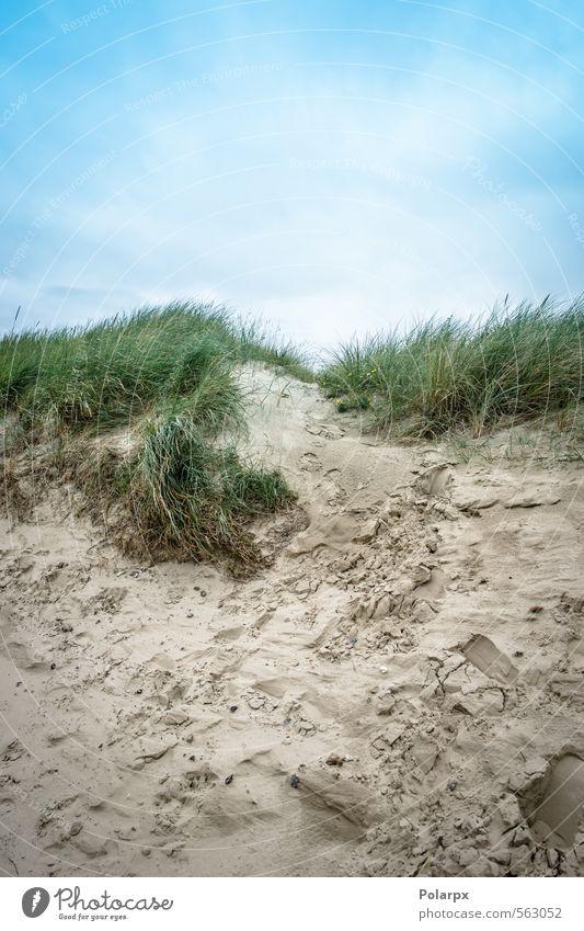 Sand und Himmel schön Freizeit & Hobby Ferien & Urlaub & Reisen Sommer Strand Meer Natur Landschaft Wolken Wetter Wind Gras Küste Fußspur natürlich blau gelb
