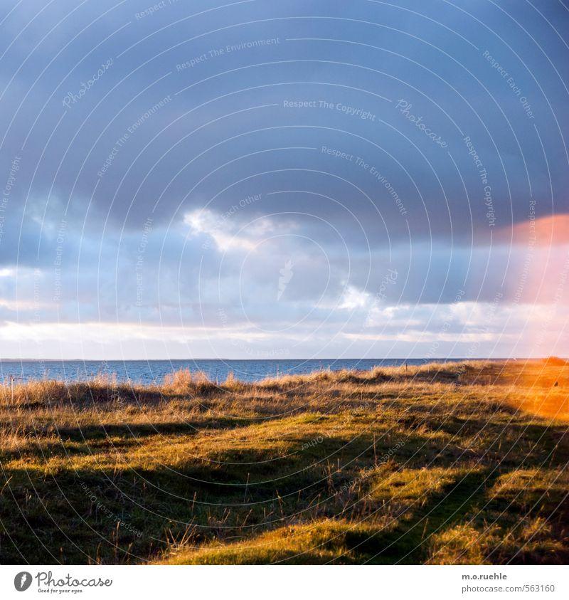 the ghost Himmel Natur Ferien & Urlaub & Reisen Sonne Meer Landschaft Wolken Strand Ferne Umwelt Herbst Gras Küste Freiheit Horizont Stimmung