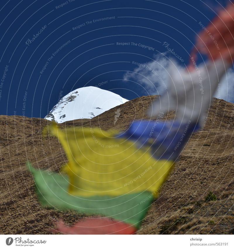 Nepal I Himmel Natur Ferien & Urlaub & Reisen Landschaft Ferne Berge u. Gebirge Wiese Schnee Freizeit & Hobby Wind wandern genießen Abenteuer Gipfel Hügel