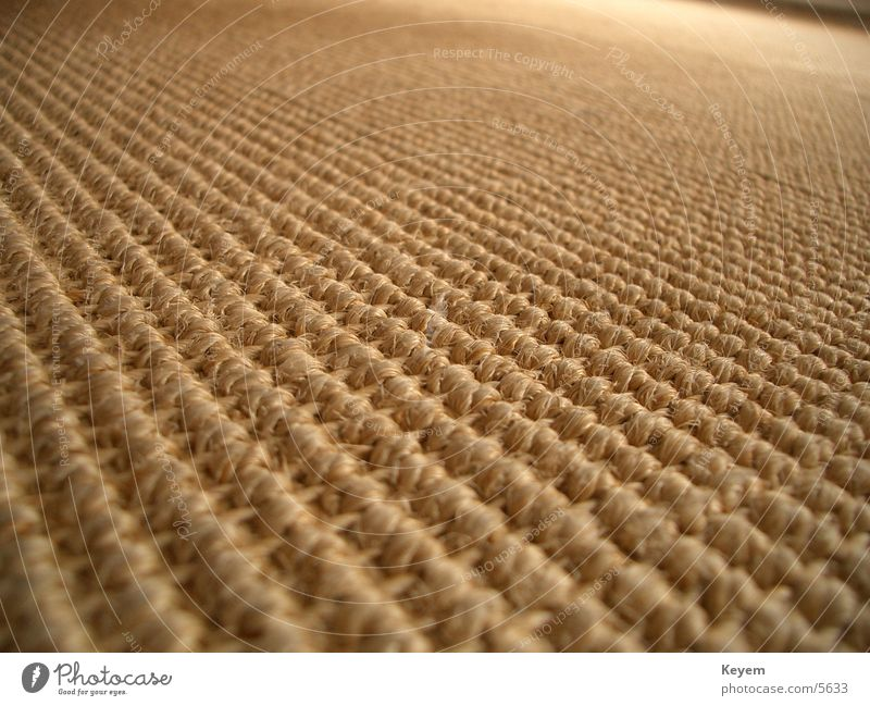 Der Teppich (?) Bodenbelag Stoff Holzfaser