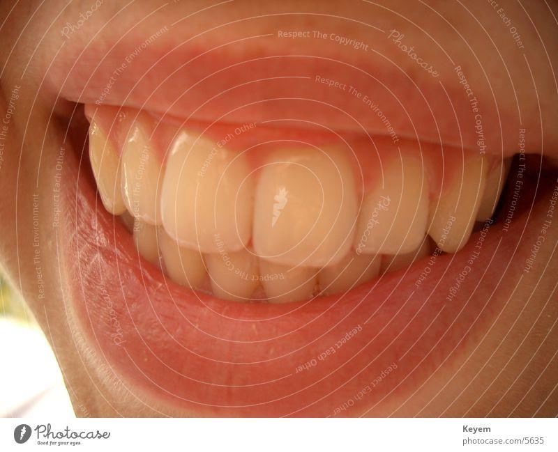 smile :D Frau lachen Mund Fröhlichkeit Zähne Lippen Freundlichkeit grinsen