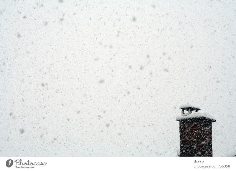 Schnee, schnee, schnee Winter kalt Schneefall chaotisch Schornstein Himmel 1 Menschenleer Außenaufnahme Abdeckung Schneeflocke Schneesturm eng Winterstimmung