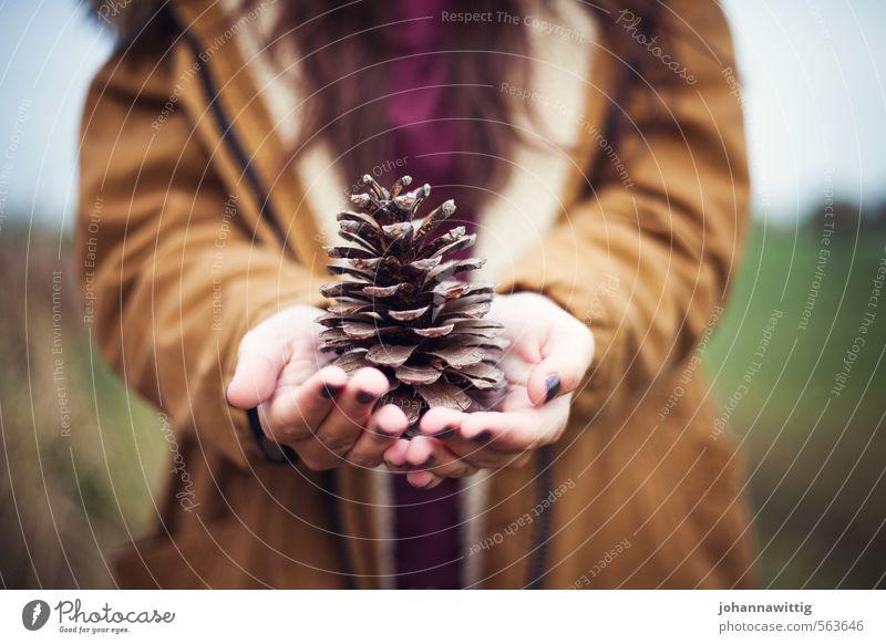 vom sommer für dich Kind Natur Jugendliche Hand Erholung Junge Frau ruhig Liebe feminin Herbst Idylle 13-18 Jahre Finger beobachten einzigartig Ewigkeit