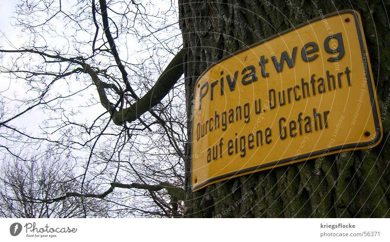 Privat??? privat Privatweg gelb Baum Baumrinde Schilder & Markierungen Natur