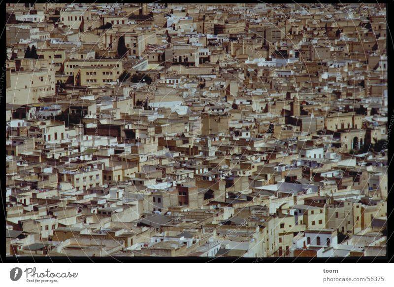 Stadt in Marokko Haus Altstadt Elendsviertel Afrika