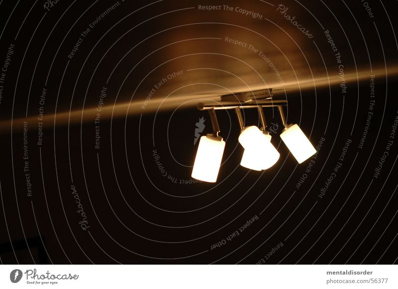 LampenStudie vol.2 Licht Leuchter Glühbirne rund schwarz dunkel Elektrisches Gerät Haushalt Striptease Illumination Kraft Decke Scheinwerfer Abend Kabel Stab