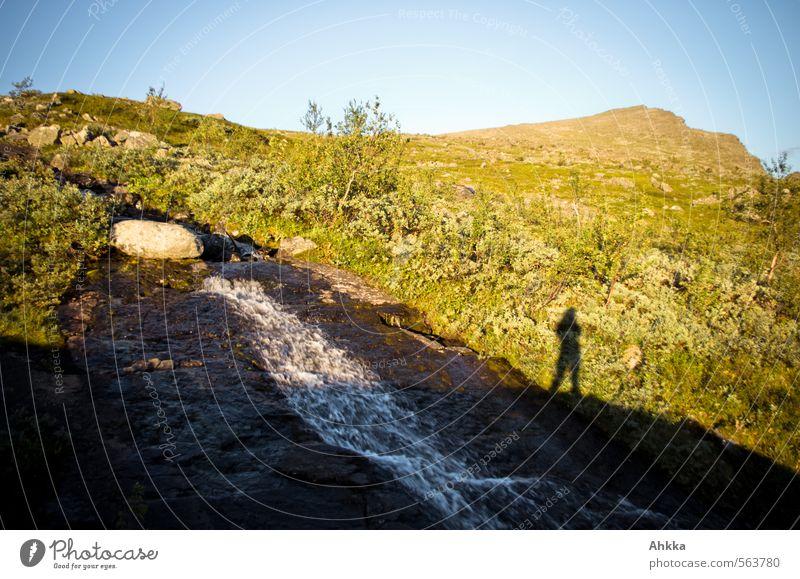 elementar Mensch Natur Pflanze Landschaft Freude Berge u. Gebirge Leben Gras klein Stimmung Lifestyle authentisch Sträucher wandern Schönes Wetter Coolness