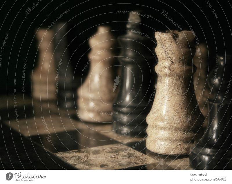 Black and white unite... Schachfigur Spielen Spielzug Spielbrett Spielfeld Schachbrett Makroaufnahme Pferd schwarz weiß Holzbrett chess figures board Marmor