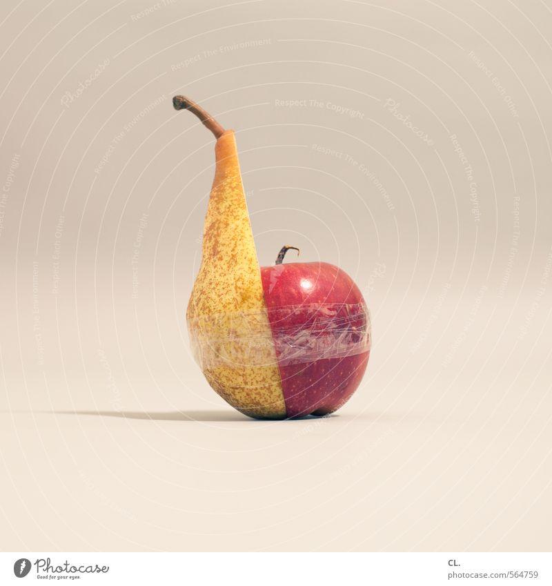 geht doch Gesunde Ernährung Essen Gesundheit außergewöhnlich Lebensmittel Zusammensein Frucht Zufriedenheit einzigartig Kreativität Kontakt Apfel lecker