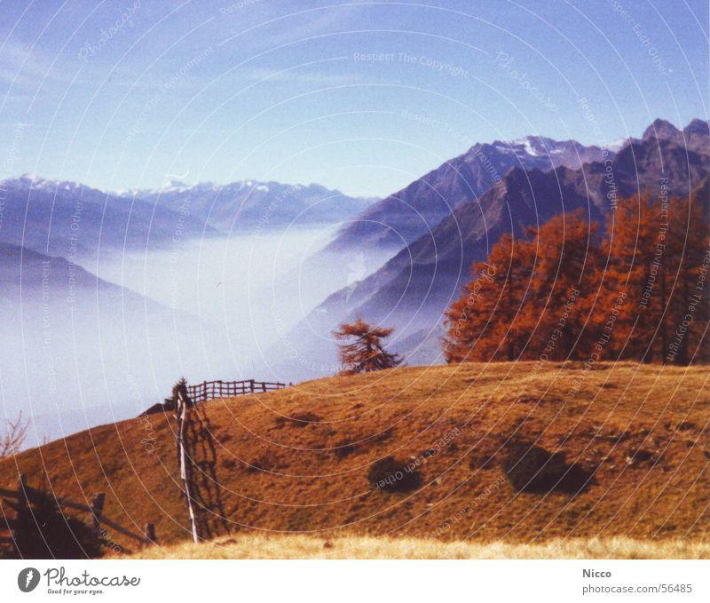 Meran Himmel Ferien & Urlaub & Reisen blau schön Sonne Baum rot Landschaft Wolken Freude Ferne Berge u. Gebirge Wiese Herbst Gras Schnee