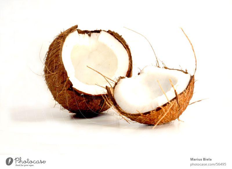 ...weicher Kern Ferien & Urlaub & Reisen Strand braun offen Frucht Palme Kerne Nuss Kokosnuss Kokospalme