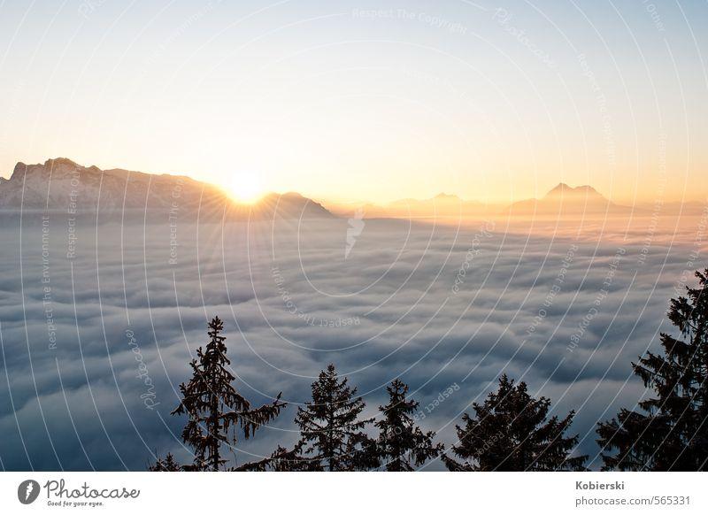 Sonnenuntergang am Gaisberg Himmel Natur blau grün ruhig Wolken Winter Umwelt Berge u. Gebirge Schnee Horizont Eis orange gold Zufriedenheit Tourismus