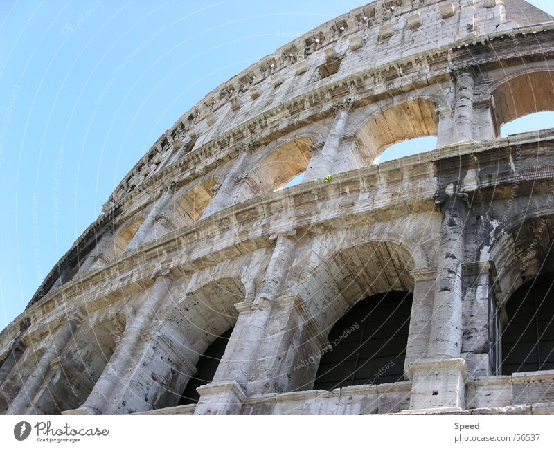 Fazination Colosseum alt Himmel Ferien & Urlaub & Reisen Fenster Stein Gebäude Italien Vergangenheit historisch Rom antik Blauer Himmel Römerberg Kolosseum