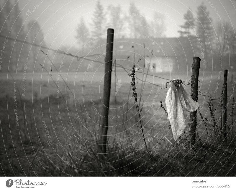geisterstunde Landschaft dunkel Herbst Gras Kunst Feld Idylle verrückt Urelemente Zeichen Zaun Bauernhof Geister u. Gespenster skurril Künstler unheimlich